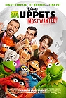 Muppets Most Wanted (cc) -click for show times