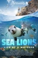 Sea Lions: Life By A Whisker