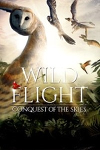 Wild Flight: Conquest Of The Skies